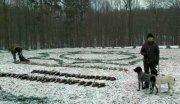 Partie de chasse en république tchèque